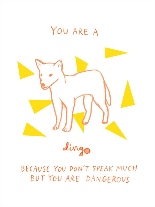 australian_animals_dingo.jpg