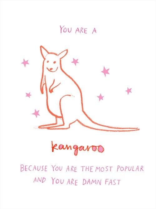 australian_animals_kangaroo.jpg
